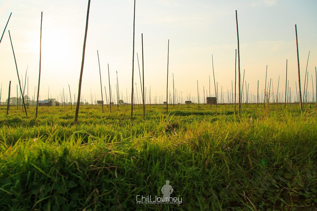 Mandalay_Inle_bagan_MG_7716