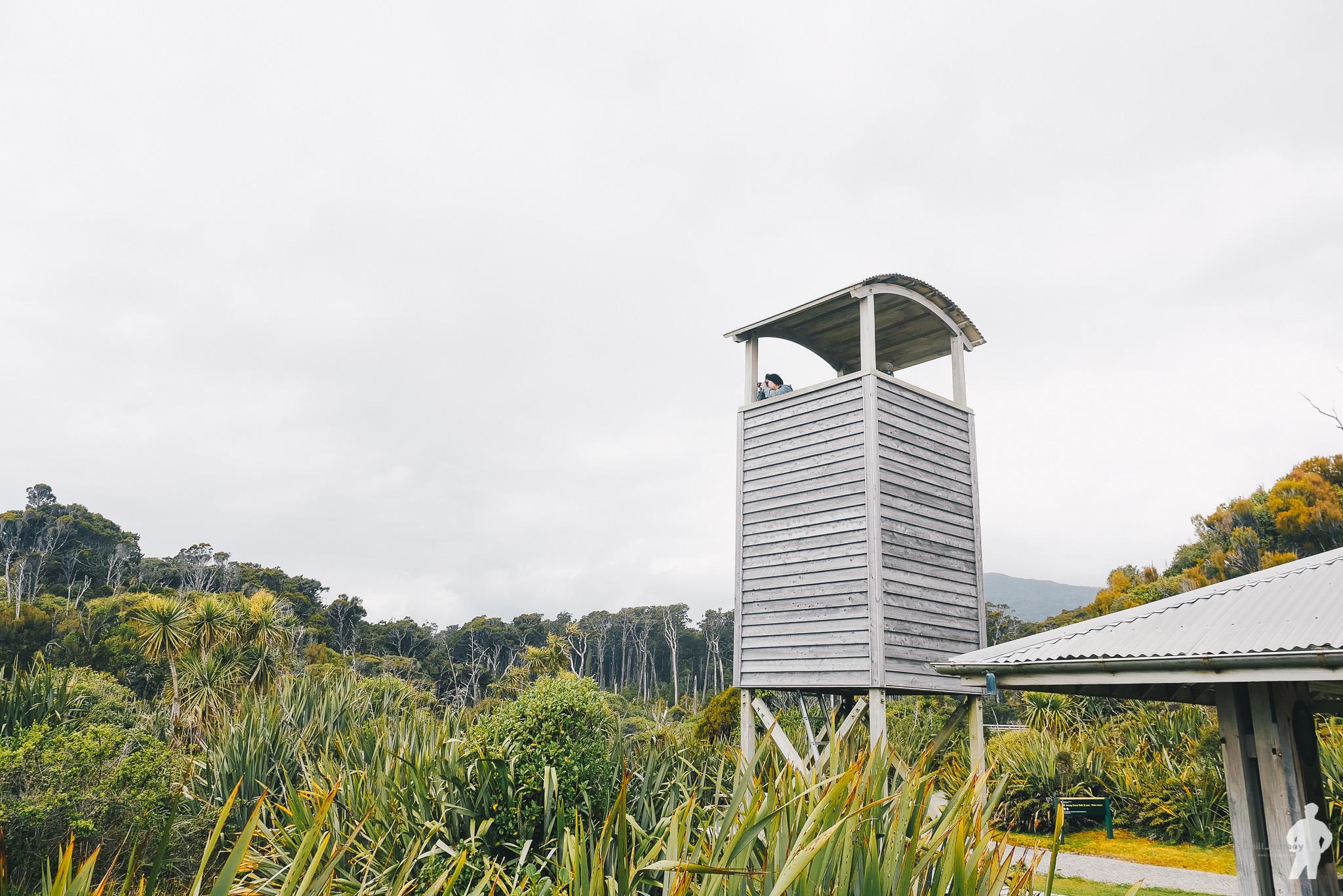 NZ_00126