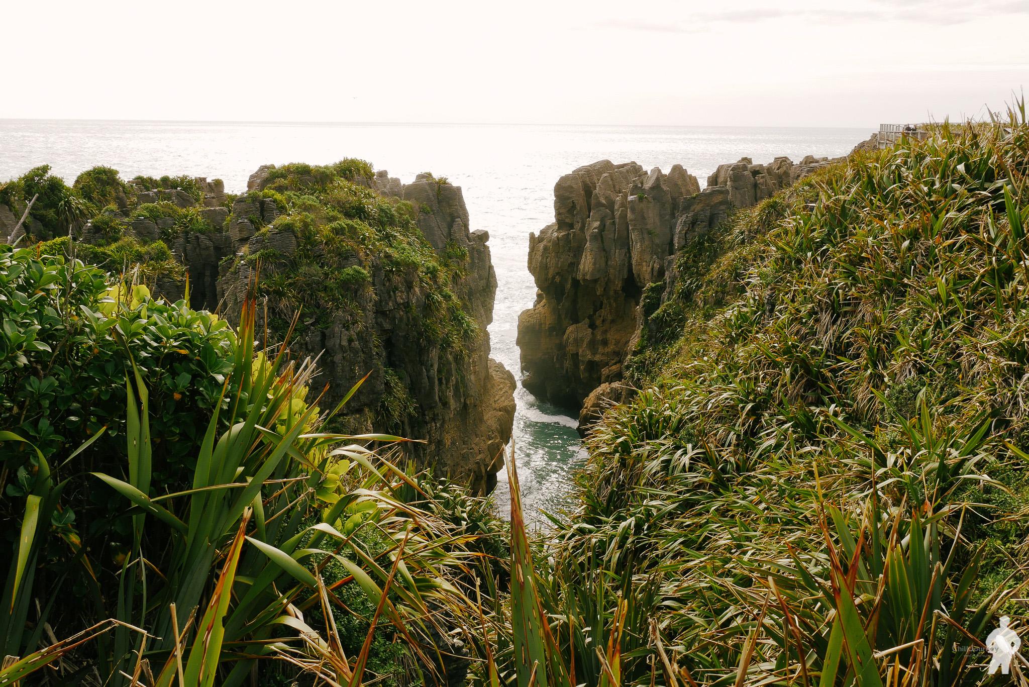 NZ_00148