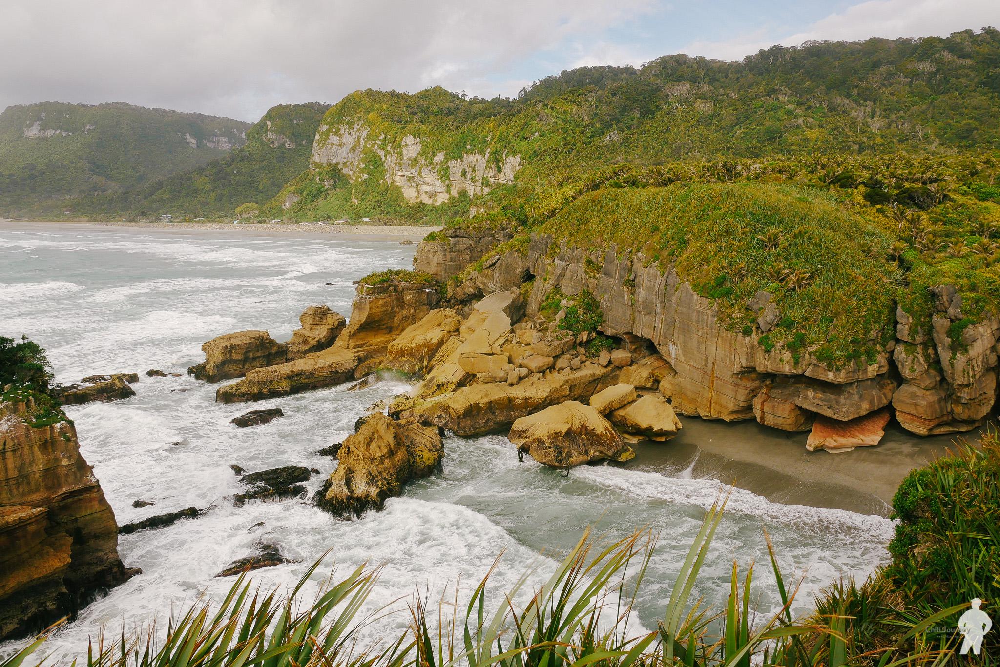 NZ_00151