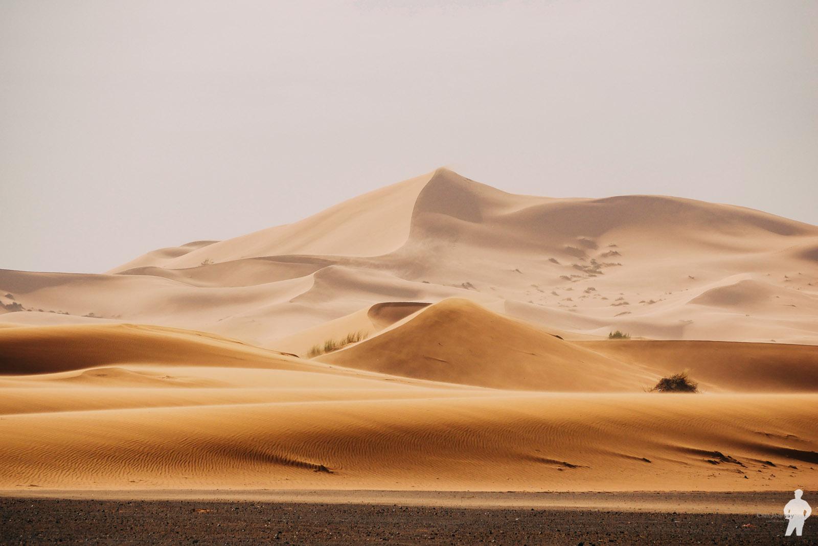 Morocco_00087