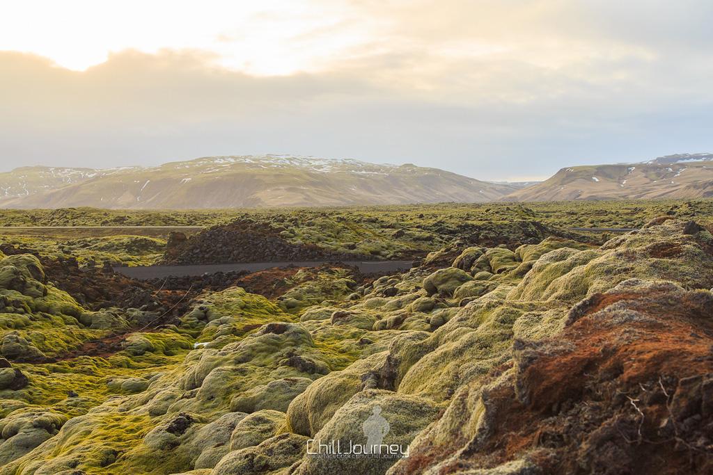 Iceland_MG_1933