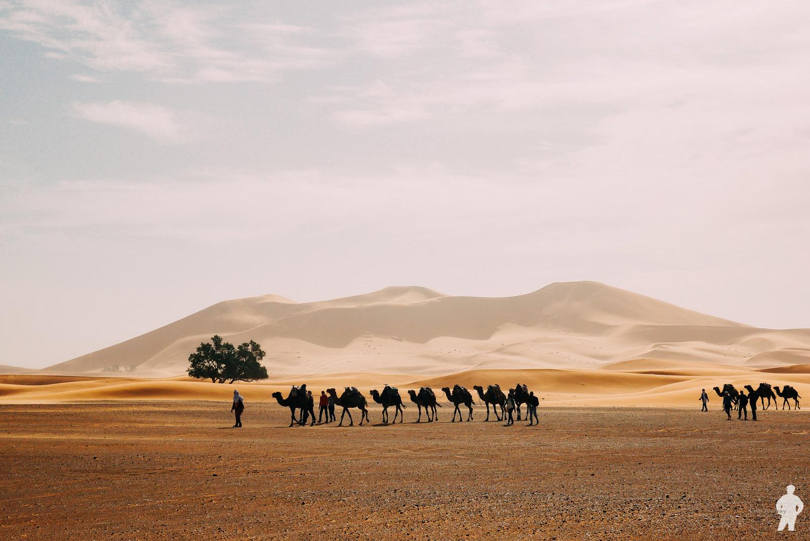 Morocco_00086